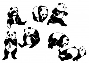 http://www.irmgard-missall.de/files/gimgs/th-39_Panda1.jpg